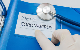 Connection Found Between Bats And The Coronavirus